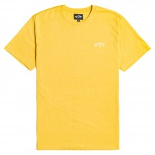 Camiseta Billabong All Day Crew ss Amarillo