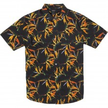 Camisa Rvca Byrd Of Paradise Negro